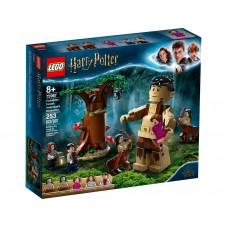 LEGO 75967 Het Verboden Bos: Omber`s ontmoeting met Groemp